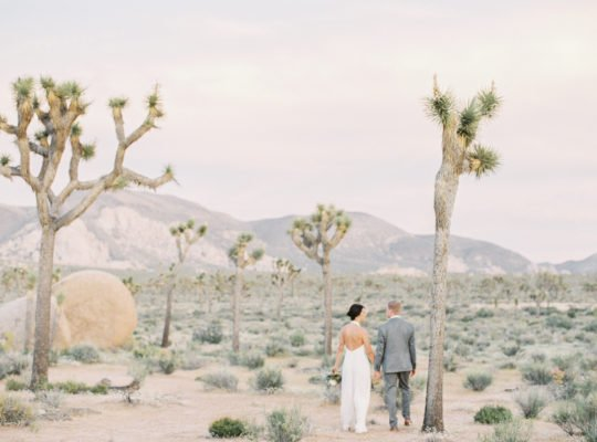 Southern California: Joshua Tree Elopement